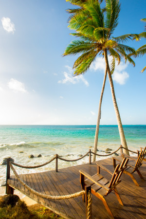 Deck lounge palmtree tropical caribbean travel