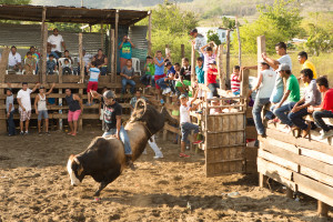 Bullrider comes out of gate at nicaragua rodeo, travel