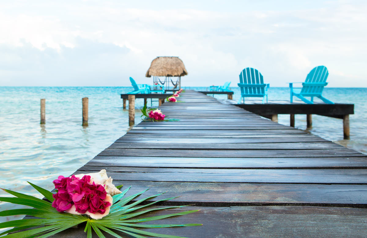Dock_Flowers_Belize_Carribbean_Tropical