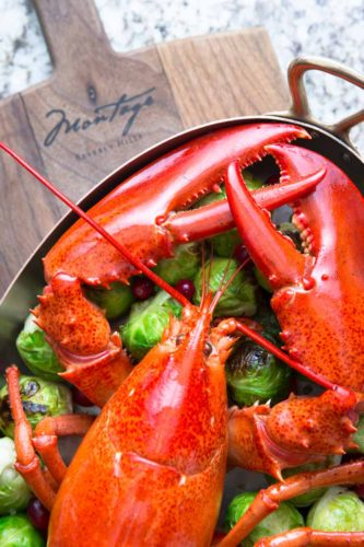 food-photography-gourmet-lobster-montage-hotel